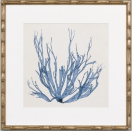 Navy blue coral print with gold faux bamboo frame