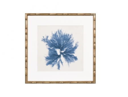 Coral Print with bamboo style frame in navy blue